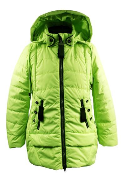 Яркая демисезонная куртка Vitacci 2172213