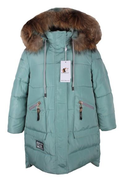 Куртка Vitacci 2171477-32